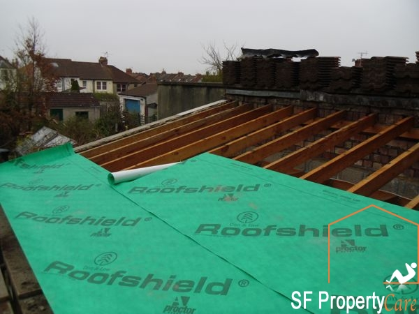 Fishpond Roof Renewal 5