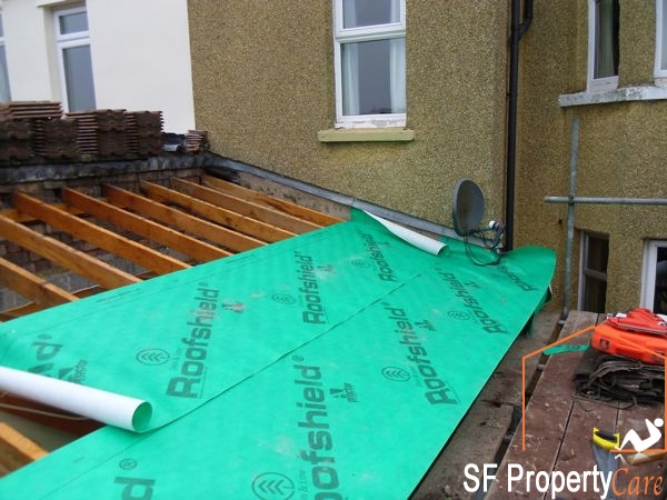 Fishpond Roof Renewal 6