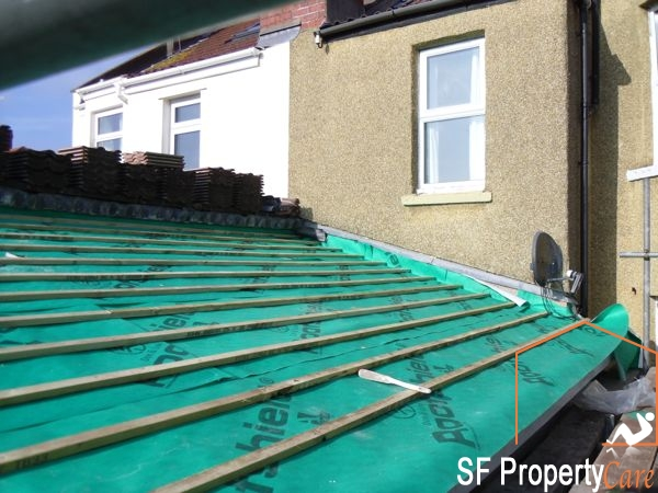 Fishpond Roof Renewal 7
