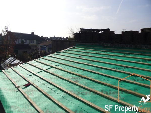 Fishpond Roof Renewal 8